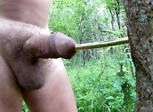 Amateur (Gay);BDSM (Gay);Masturbation (Gay);Sex Toy (Gay);Webcam (Gay);Gay Sex (Gay);Gay Public (Gay);Gay Outdoor (Gay) sex the urethra